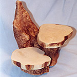"2 Shelf ""Cypress Knee"" Display"