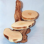 "3 Shelf ""Cypress Knee"" Display"